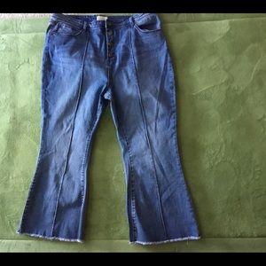 Plus Size Jeans BNWOT